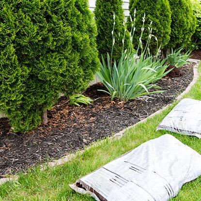 Techni-vert, entretien de jardin à Ohain, Maubeuge